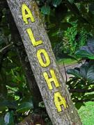 Road Signs Prints - Aloha Print by Elizabeth Hoskinson
