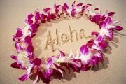 Write Prints - Aloha Print by Mary Van de Ven - Printscapes