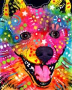 American Eskimo Dog Print by Dean Russo