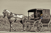 Horse Buggy Posters - Amish Boy Tips Hat Poster by Robert Frederick