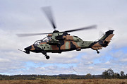 The Tiger Metal Prints - An Australian Army Tiger Helicopter Metal Print by Stocktrek Images