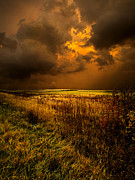 Environement Photo Posters - An Autumn Storm Poster by Phil Koch