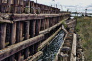 Wood Pylons Photos - Ancient Pier by Chris Fleming