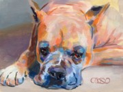 Boxer Art Paintings - Andre by Kimberly Santini