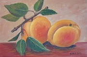 Apricot Print by Ema Dolinar Lovsin