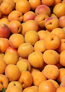 Food And Beverage Prints - Apricots Print by Carol Groenen
