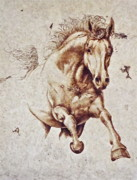 Horse Pyrography Prints - Arabian Days Print by Jerrywayne Anderson