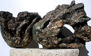 Outdoor Ceramics - Art Reef Rock series  Planter Sculpture Set of 2 by Randy Stewart