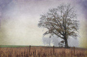 Country Scenes Metal Prints - As The Fog Sets In Metal Print by Jan Amiss Photography