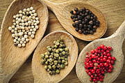 Wooden Spoons Posters - Assorted peppercorns Poster by Elena Elisseeva