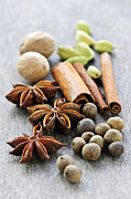 Sticks Prints - Assorted spices Print by Elena Elisseeva