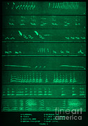 Mocking Metal Prints - Audio Spectrograms Metal Print by Omikron