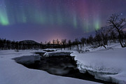 Bare Trees Prints - Aurora Borealis Over Blafjellelva River Print by Arild Heitmann
