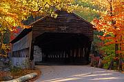 Fall Road Digital Art Originals - Autumn Bridge by William Carroll