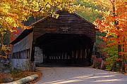 Autumn Bridge Print by William Carroll