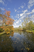 David Letts Framed Prints - Autumn Colors on the Delaware and Raritan Canal Framed Print by David Letts