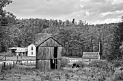 Shed Acrylic Prints - Autumn Farm monochrome Acrylic Print by Steve Harrington