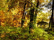 Bradley Smith Prints - Autumn Gazebo Print by Bradley Smith