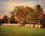 Autumn Landscape Art - Autumn Harvest by Jai Johnson