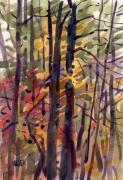 Autumn Foliage Painting Prints - Autumn Leaves Print by Donald Maier