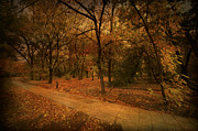 Digital Drawing Posters - Autumn Path Poster by Svetlana Sewell