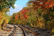 Autumn Landscape Art - Autumn Rails by Pamela Baker