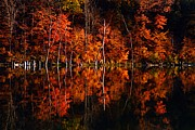 Usa Photography Prints - Autumn Reflections Print by Larry Ricker