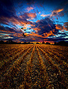 Horizons Framed Prints - Autumn Rising Framed Print by Phil Koch