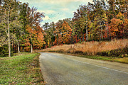 Asphalt Framed Prints - Autumn Road Framed Print by Darren Fisher