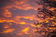 Best Photos - Autumn Sky by Konstantin Dikovsky