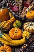 Gourds Prints - Autumn still life Print by Garry Gay