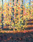 Jane  Simonson - Autumn Woods at Dellwood