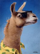 Nice Art - Bahama Llama... by Will Bullas