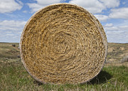 Small Towns Metal Prints - Bale of Hay in a Field Metal Print by Paul Edmondson