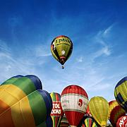 Balloon Fiesta Prints - Balloons Print by Angel  Tarantella