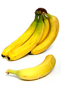 Yellow Bananas Posters - Bananas Poster by Photo Researchers, Inc.