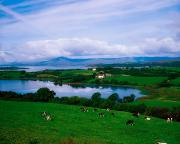 Fed Metal Prints - Bantry Bay, Co Cork, Ireland Metal Print by The Irish Image Collection