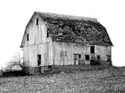 Barn On The Hill Bw Print by Julie Hamilton