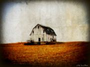 Farming Barns Posters - Barn on the Hill Poster by Julie Hamilton