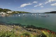 Sailing Ship Prints - Bay Beside Glandore Village In West Print by Trish Punch