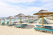 Empty Chairs Prints - Beach umbrellas on sandy seashore Print by Elena Elisseeva