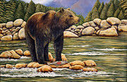 Water Photographs Painting Originals - Bear Catch Of The Day by Carmen Del Valle