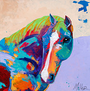 Colorful Horse Paintings - Beau by Tracy Miller