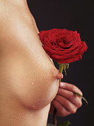Holding Flower Framed Prints - Beautiful Woman Breast and a Red Rose Framed Print by Oleksiy Maksymenko
