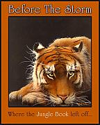 Tiger Painting Framed Prints - Before the Storm... Framed Print by Will Bullas