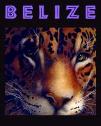 Cat Mixed Media Posters - Belize... Poster by Will Bullas