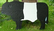 Farm Reliefs - Belted Galloway Bull by Jacqueline Walden