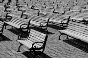 Park Benches Photo Framed Prints - Benches Framed Print by Perry Webster