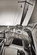 Charleston Sunset Posters - Beneteau 49 Sailing Yacht Close Hauled Charleston Sunset Sailboat Poster by Dustin K Ryan