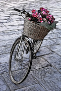 Lucca Photos - Bicycle In Lucca Italy by Bob Christopher